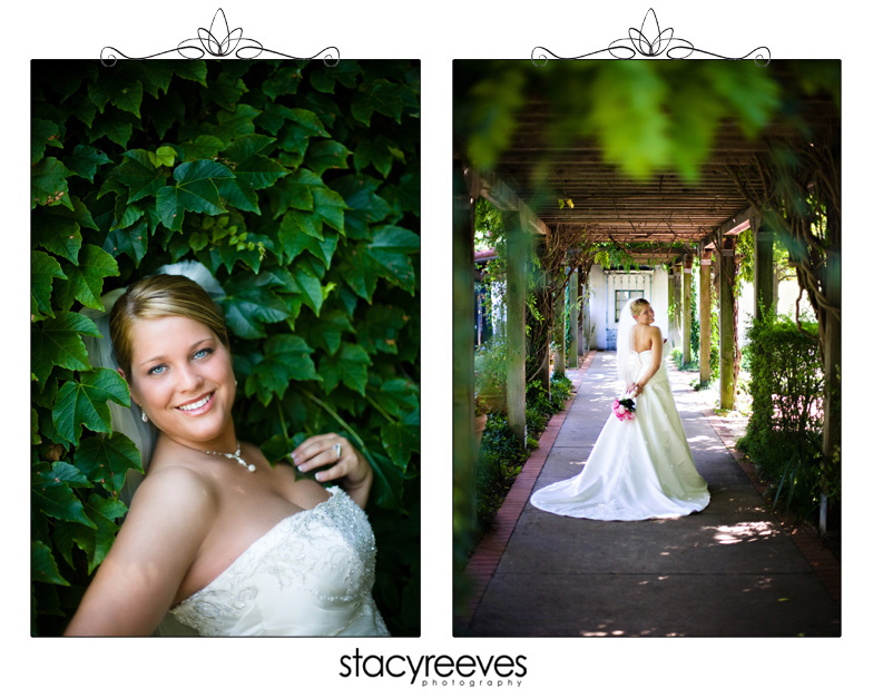 Bridal session of Julie Nienhiser Neinhiser at the Dallas Arboretum by Dallas wedding photographer Stacy Reeves; bride surrounded by foliage and leaves