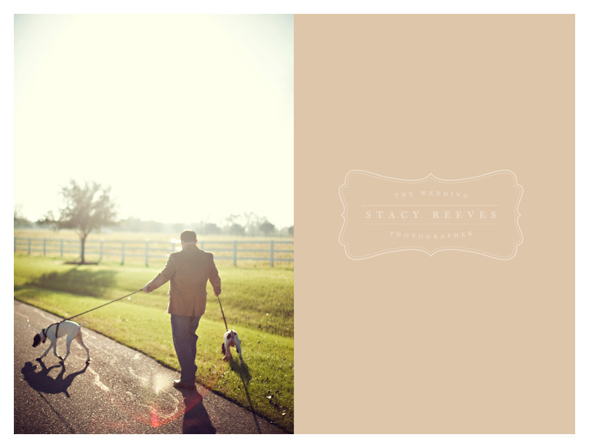 Holly Harlan and Shane intimate Houston wedding elopement at Briscoe Manor by modern wedding photographer Stacy Reeves