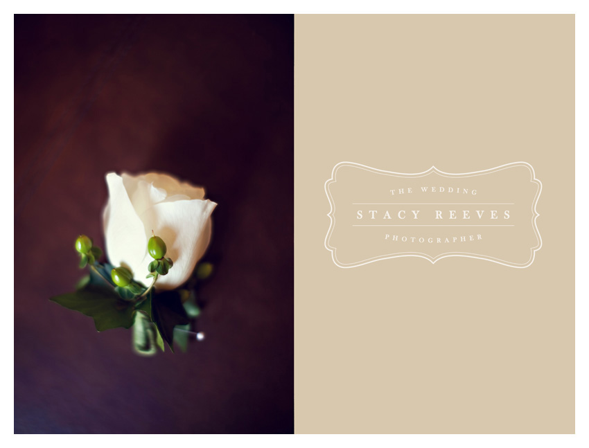 Holly Harlan and Shane intimate Houston wedding elopement at Briscoe Manor by vintage style wedding photographer Stacy Reeves